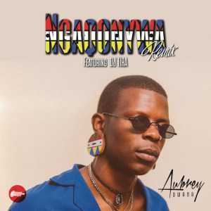 Aubrey Qwana Ngaqonywa Remix ft. DJ Tira mp3 download