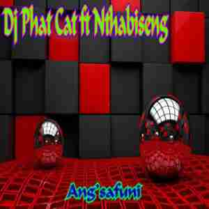 DJ Phat Cat Ang'safuni ft. Nthabiseng mp3 download