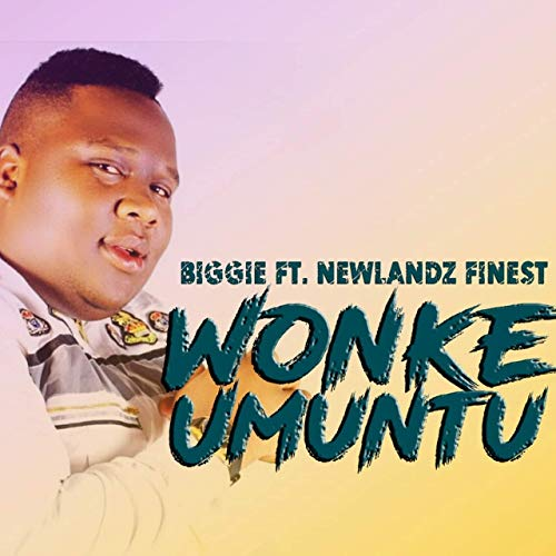 Biggie - Wonke Umuntu ft. TNS & Newlandz Finest mp3 download