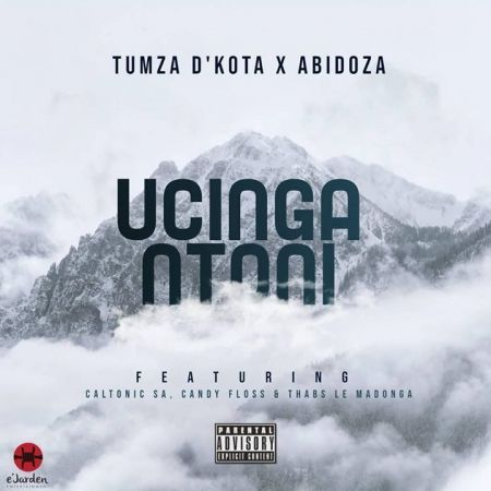 Tumza D'kota & Abidoza – Ucinga Ntoni Ft. Caltonic SA, Candy Floss & Thabs Le Madonga mp3 download