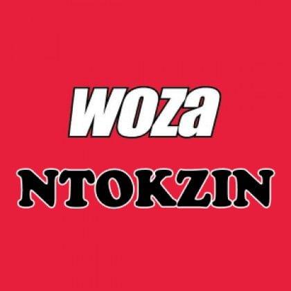 Ntokzin – Woza (Original Mix) mp3 download amapiano song